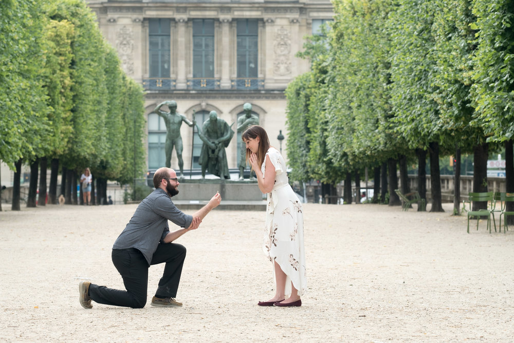 Propose at another beautiful Paris location - Propose at another beautiful Paris location, such as the beautiful islands around Notre Dame or even at the Louvre!