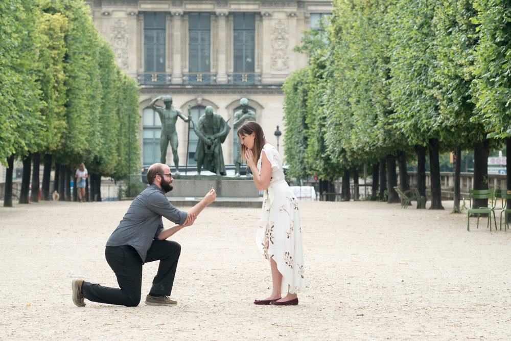 surprise proposal at louvre museum in paris