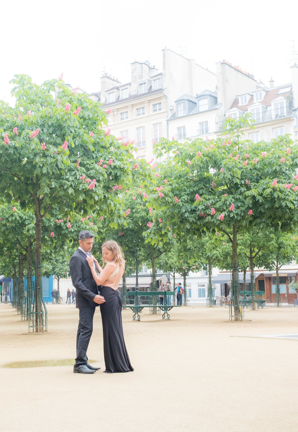 These pink trees are blooming in May at Place Dauphine, closer to Notre Dame