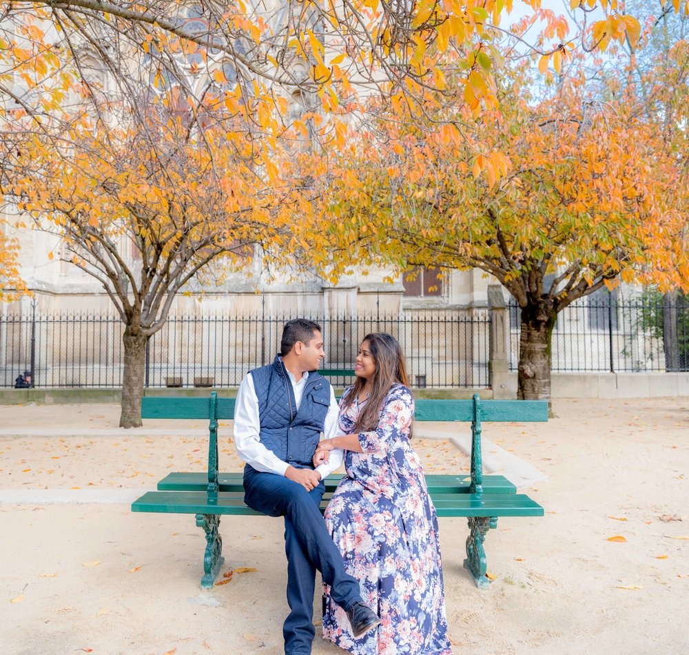 Beautiful fall color in Paris