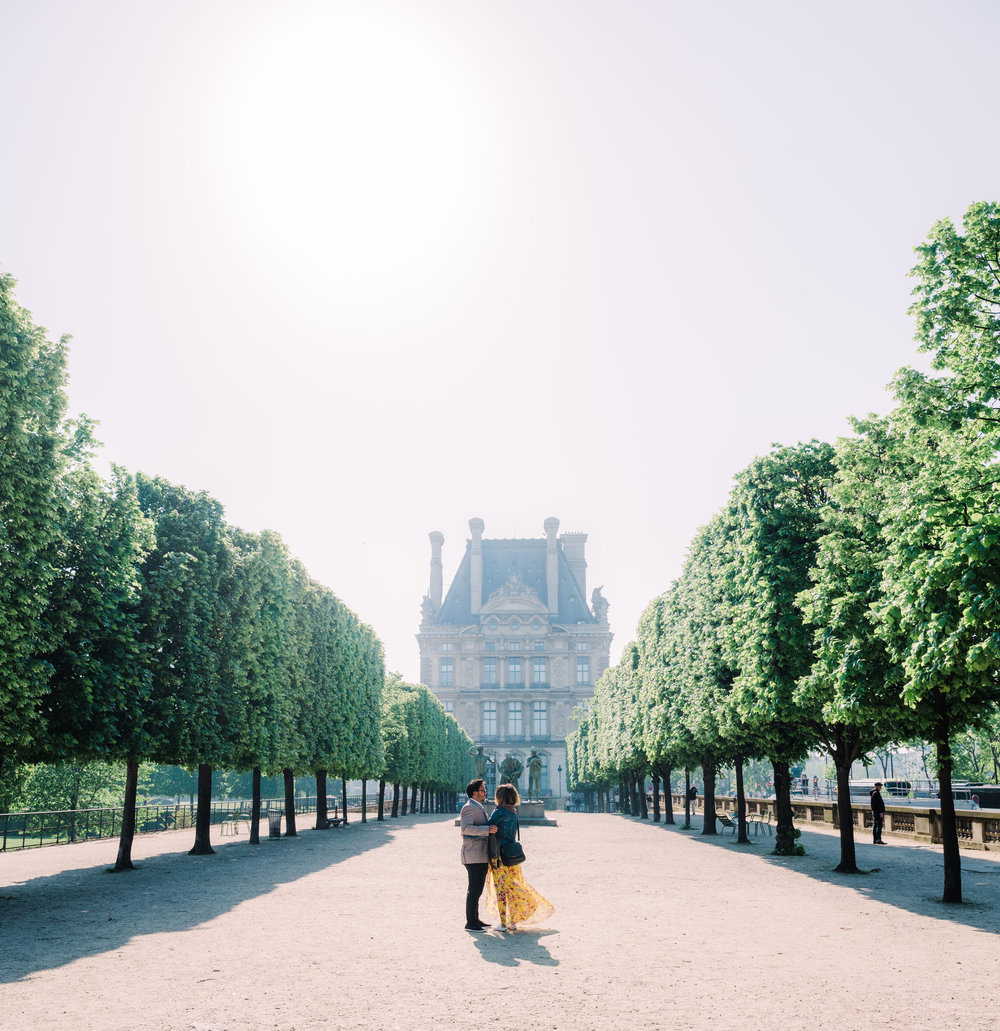 beautiful surprise proposal in the tuileries gardens in paris with a view of the louvre