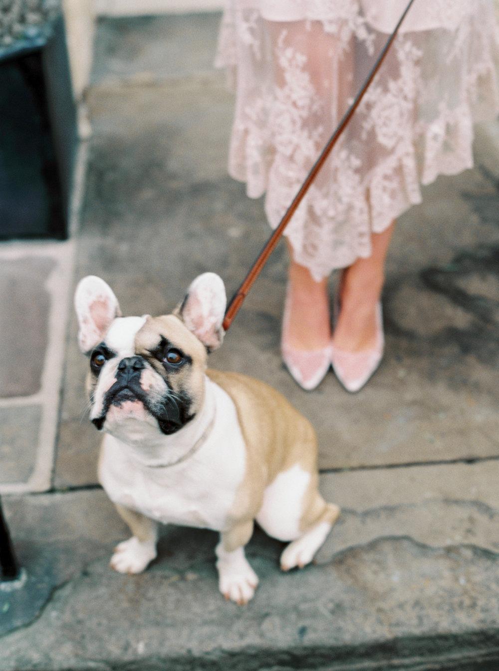 Luxury Wedding Planner UK | Our Chic & Romantic Engagement Shoot in Bath | Katie Julia Photography - 36.JPG