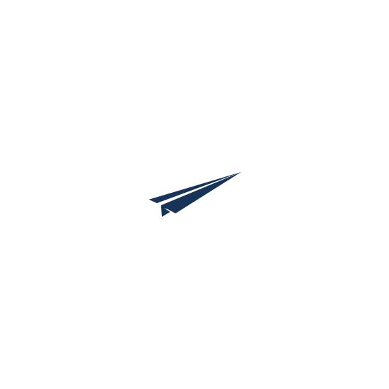 Plane Icon 2.jpg