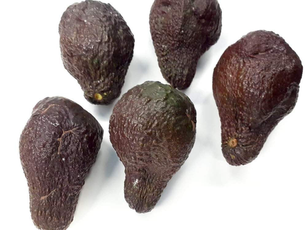 The imperfect but delicious avocados we use in our WonkyMole!