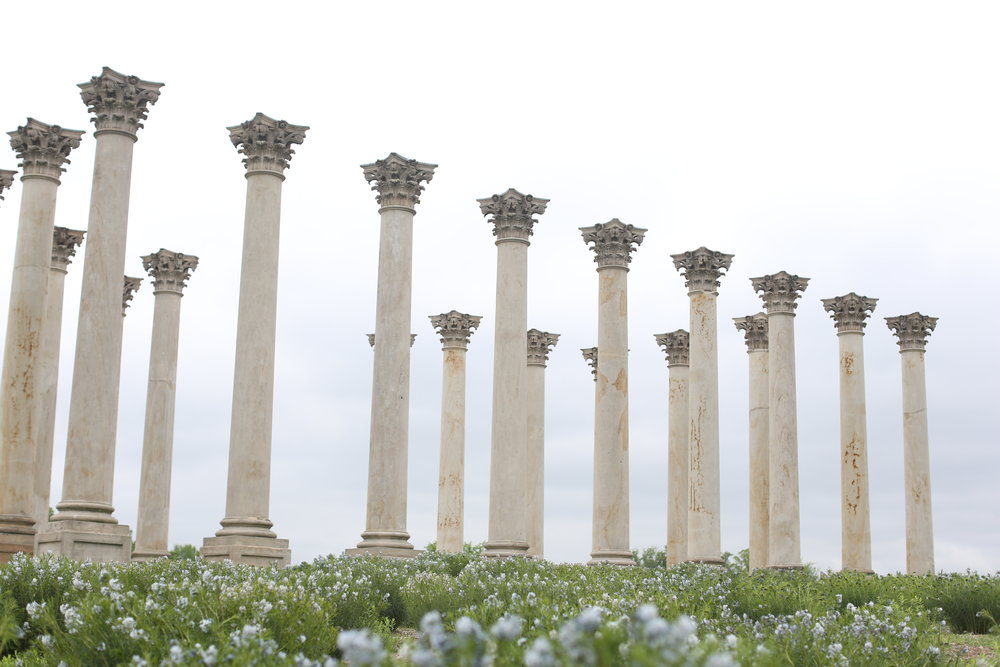 Old Capital columns at the Arboretum.