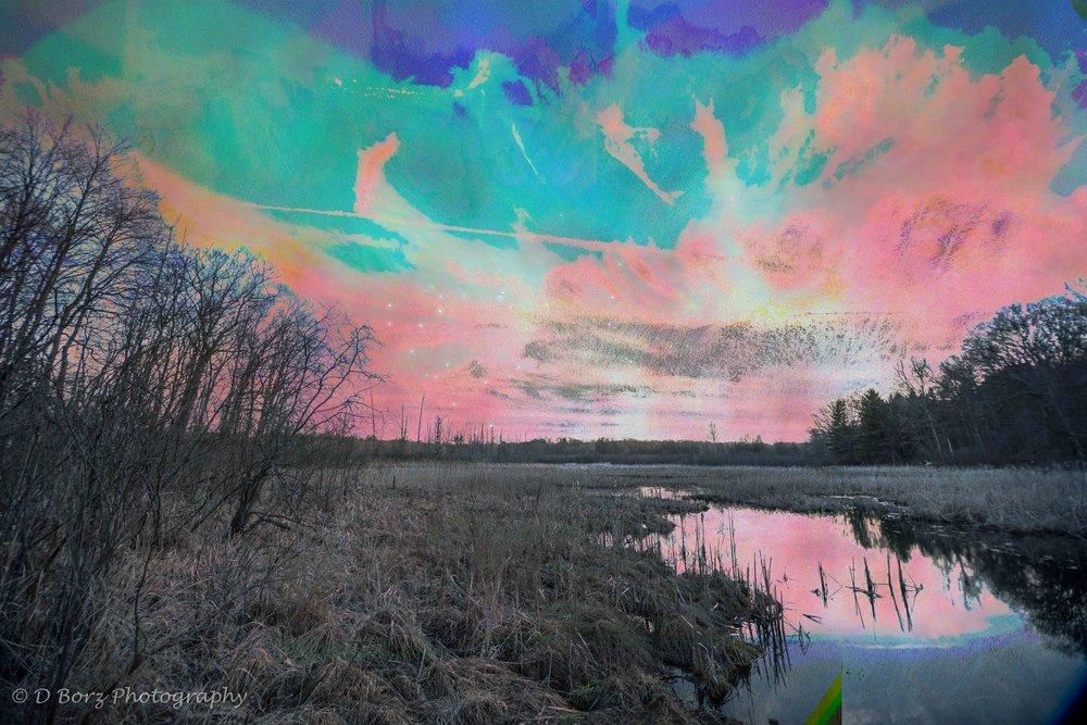 borzkowski_d_soundscape-15.jpg
