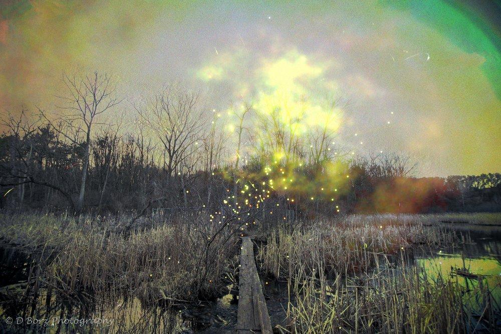borzkowski_d_soundscape-18.jpg