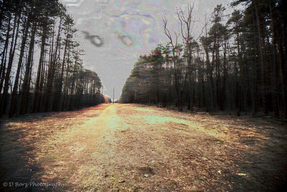 borzkowski_d_soundscape-27.jpg