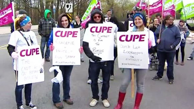 Around 400 Toronto Zoo workers walked off the job as contract talks collapsed. The union is demanding more job security for the safety of employees and the animals. (CP24)