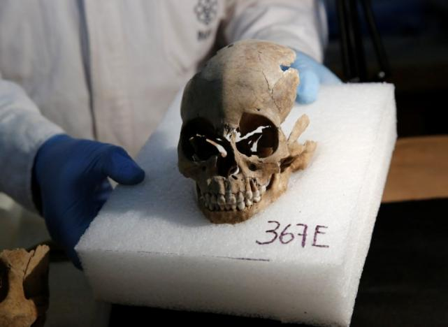 Abel Guzman, a biological anthropologist from the National Institute of Anthropology and History (INAH), examines a skull discovered at a site where more than 650 skulls caked in lime and thousands of fragments were found in the cylindrical edifice near Templo Mayor, one of the main temples in the Aztec capital Tenochtitlan, which later became Mexico City, Mexico June 30, 2017. REUTERS/Henry Romero