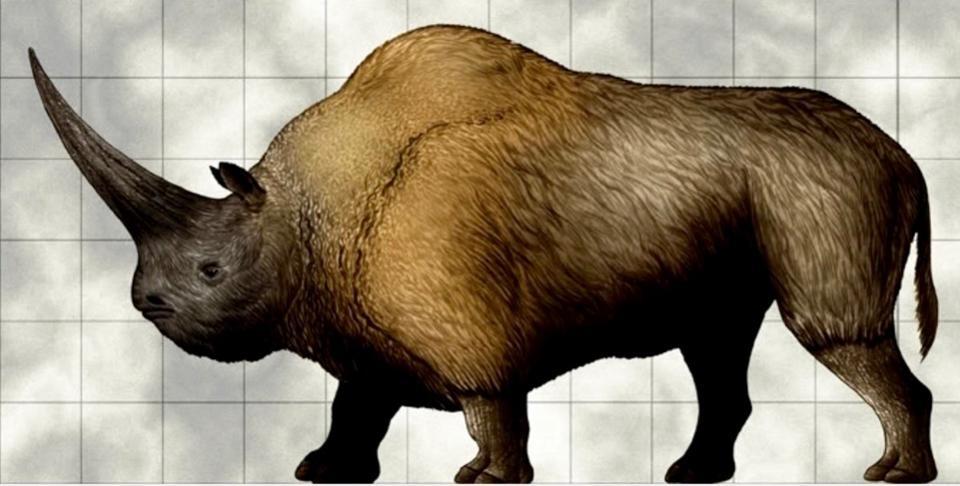 Elasmotherium-siberian-unicorn-1200x608-1-1200x608.jpg
