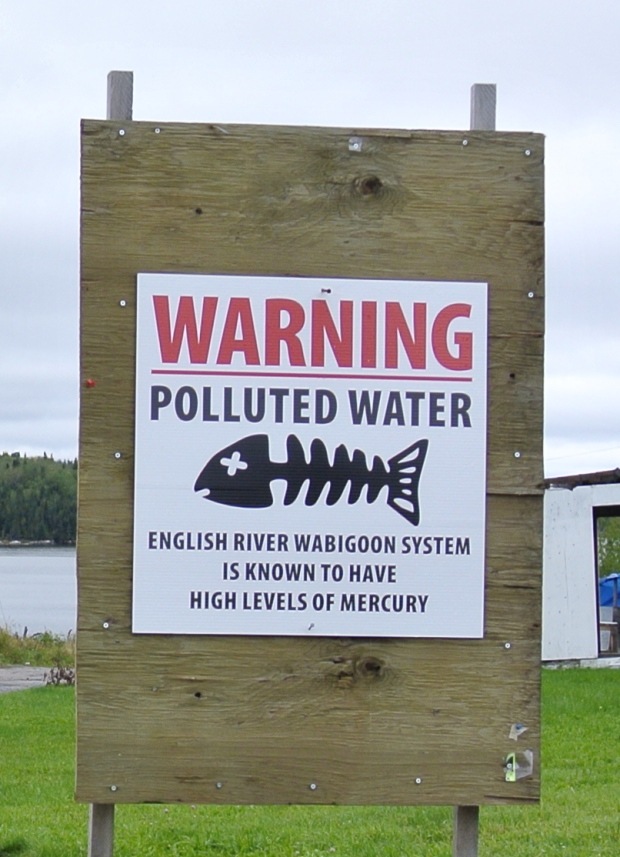 Research has shown more than 90 per cent of the populations at Grassy Narrows and Wabaseemoong First Nations are experiencing symptoms of mercury poisoning. (Jody Porter/CBC)