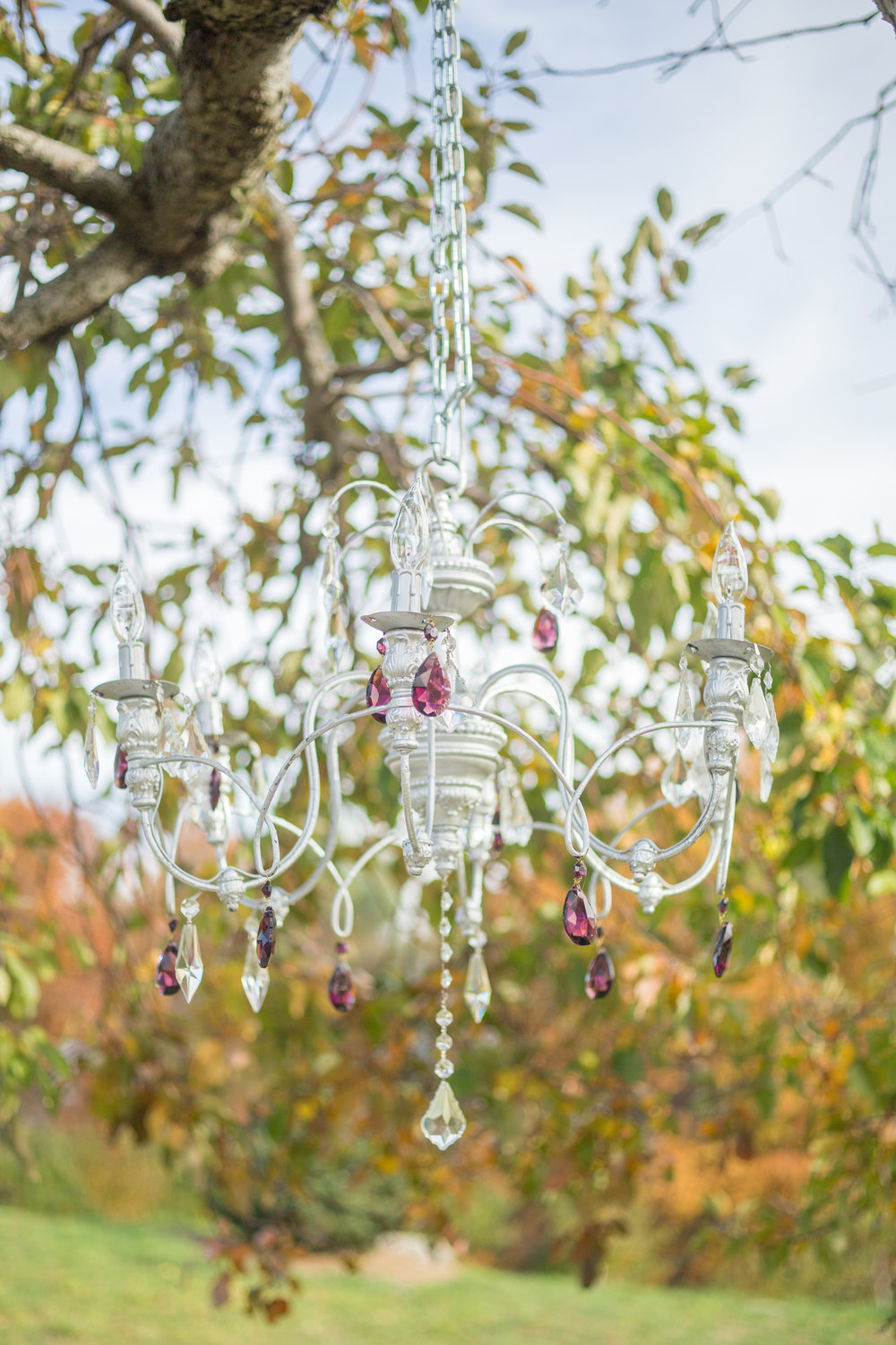 NYC Wedding Planner Ashley Douglass Events at Harvest Moon Farm Orchard with Social Decor (chandelier)