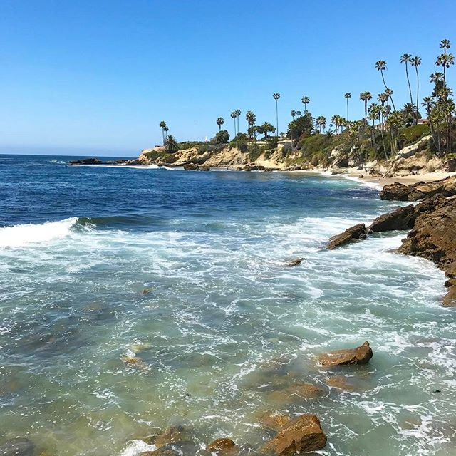 Who else could use a little of this today?! ☀️🌊🌴 Gorgeous 📷 by my friend @trgrow #lagunabeach #palmtrees #perfection #natureatitsfinest #socal #outdoorfun #rharborkids