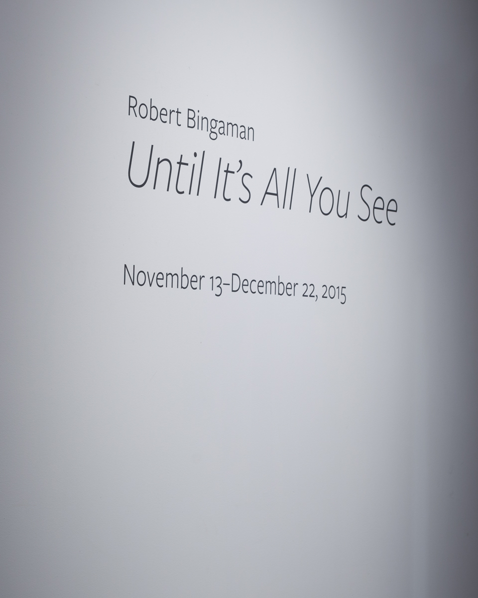 Robert Bingaman - Study for Pool.jpg