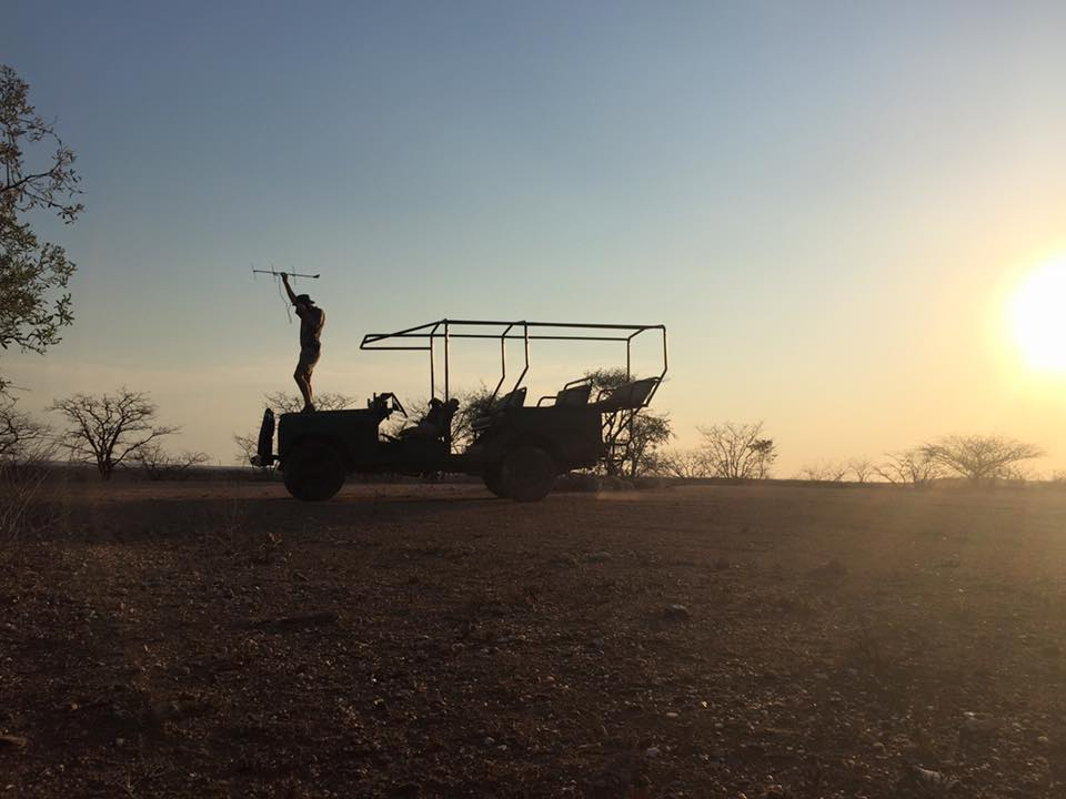 Early morning elephant monitoring on the reserve