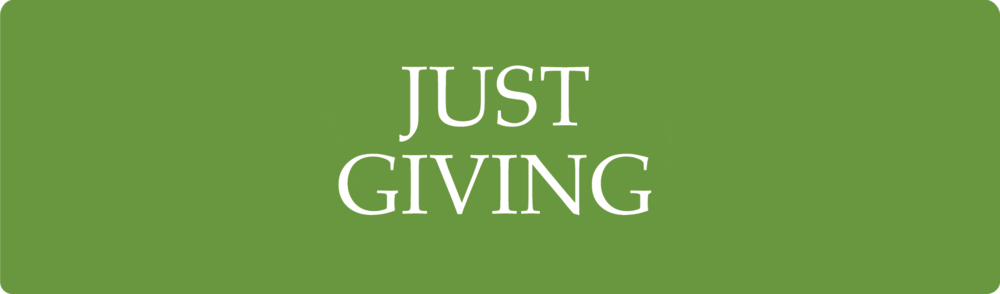 JUST_GIVING_V1.png