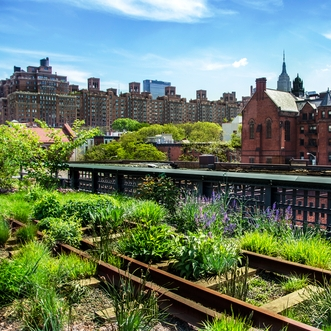High Line, Chelsea Market & Meatpacking District