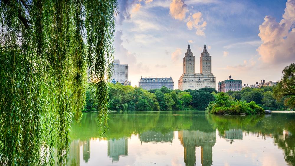 12 - Central Park (Medium).jpg