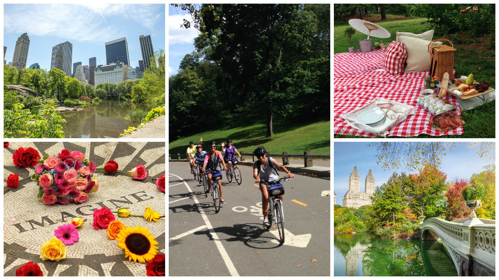 Bike + Picnic in CP - Collage.jpg