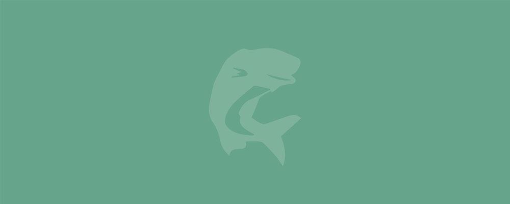 Walleye-Website-Hero-Graphics-20.jpg