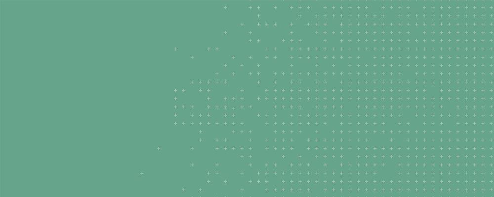 Walleye-Website-Hero-Graphics-24.jpg