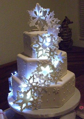 This one I just tossed in some incredibly unique, winter wedding cake lighting. What do you think?