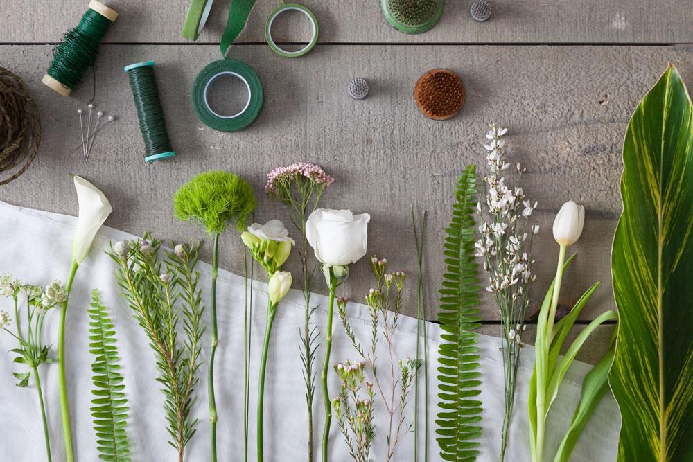 Amaryllis-Florals