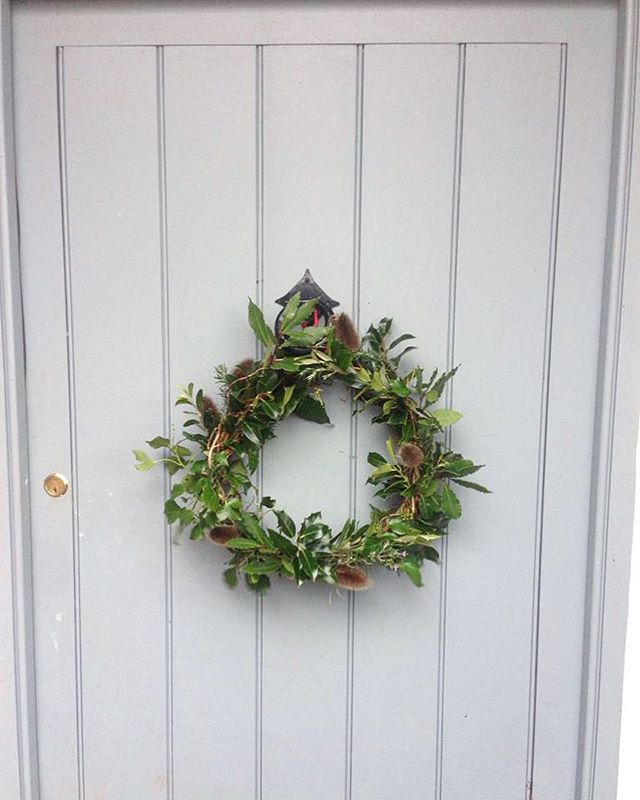 A sweet little wreath made entirely of foraged foliage and teasels.  #melloview . . #offgrid #foraged #wreath #offgridliving #granddesigns #handmade #tistheseason #christmaswreath #foragedfoliage #teasel #holly #thehollyandtheivy #frontdoorsofinstagram #welcome #builtbyhand #humble