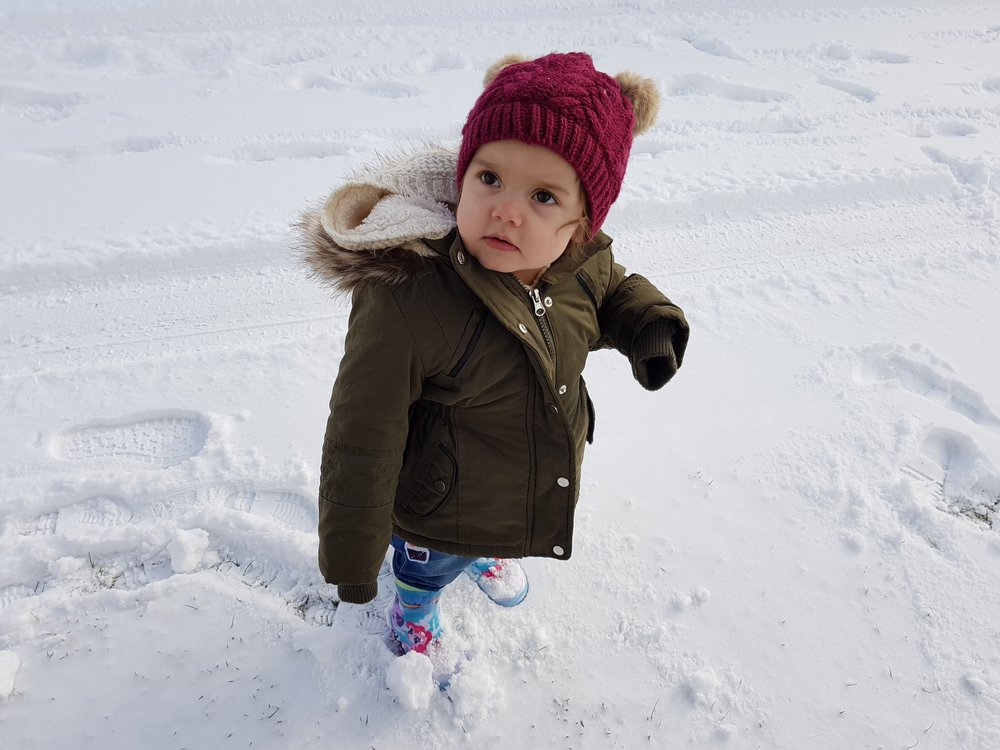 Holiday in the snow