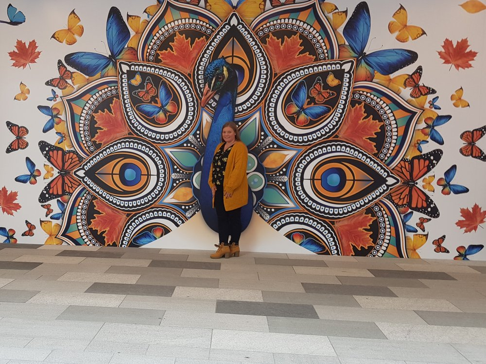The peacock mural wall in Intu Watford shopping centre
