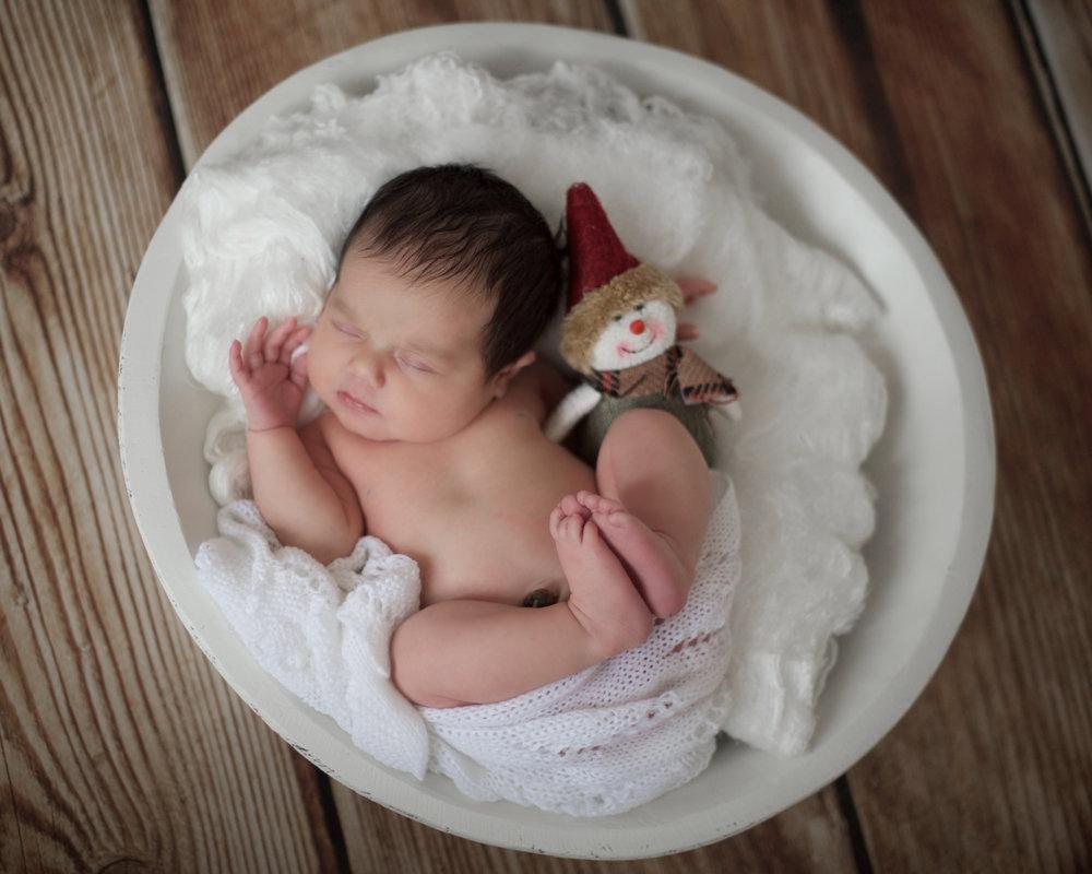 Pickle's newborn photoshoot