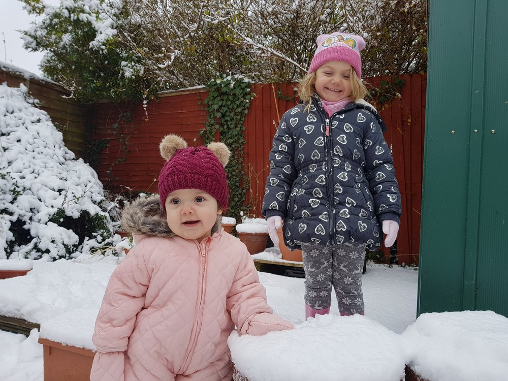 Squidgy and Pickle enjoying snow at Christmas time