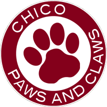 Chico Paws and Claws