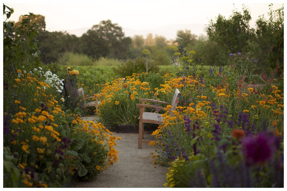 Lynmar-Estate-Gardens-Bench-20160622-IMG_2060.jpg