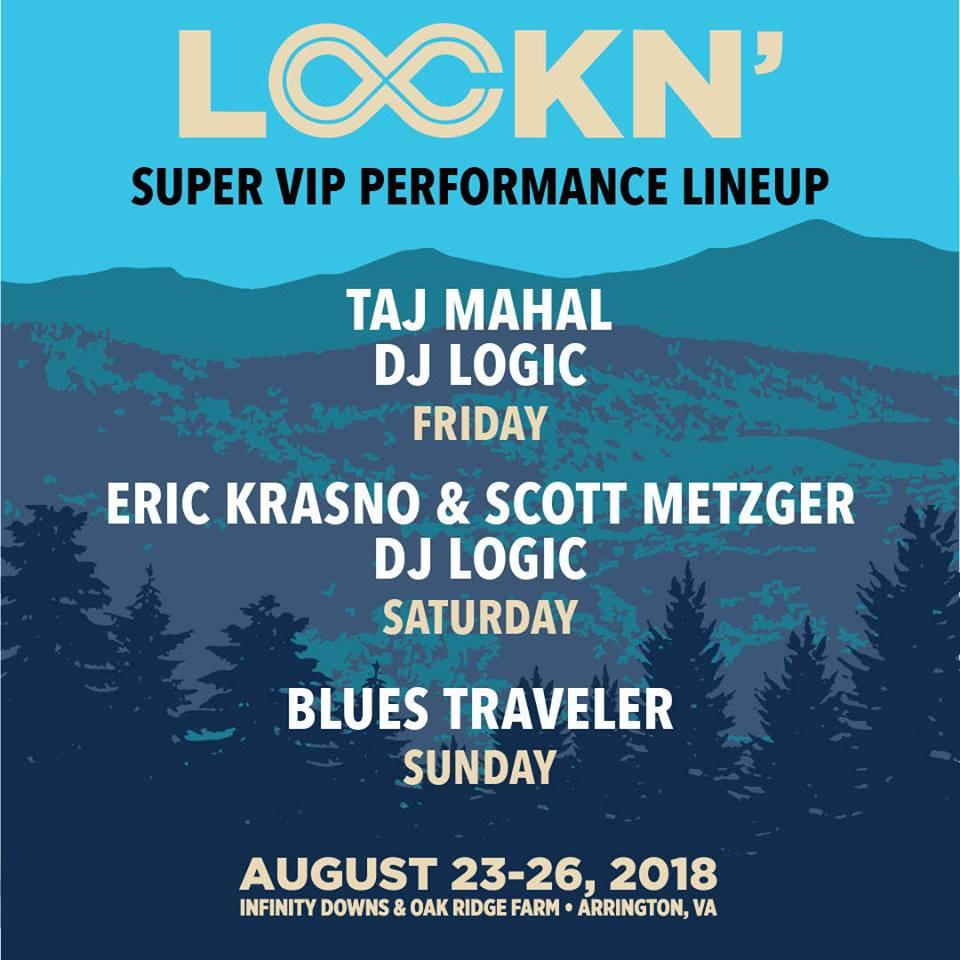 DJ Logic Lockn VIP 2018.jpg