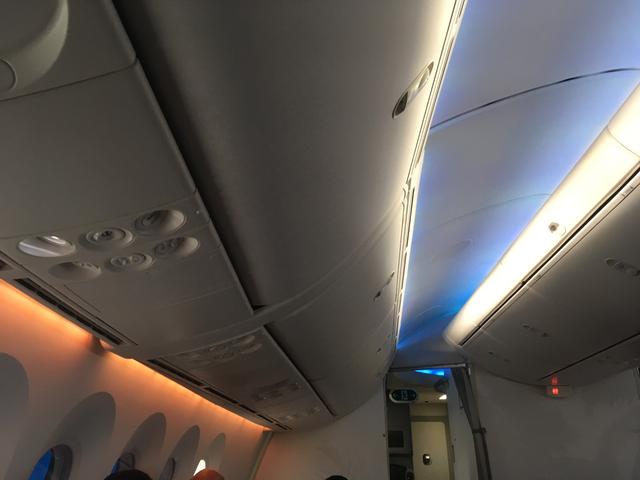 Flight787 - 1.png