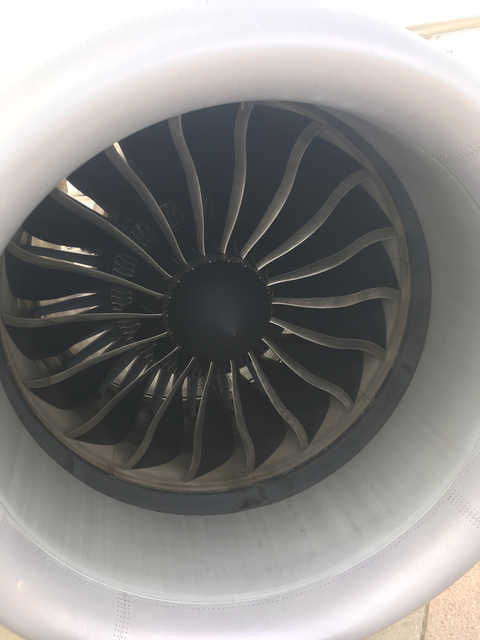 Flight787 - 5.png