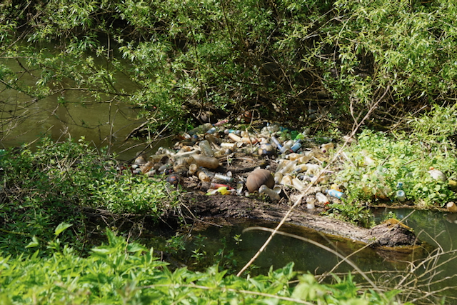 Litter in a local waterway