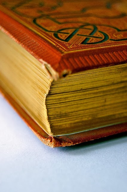 esquina del libro.jpg