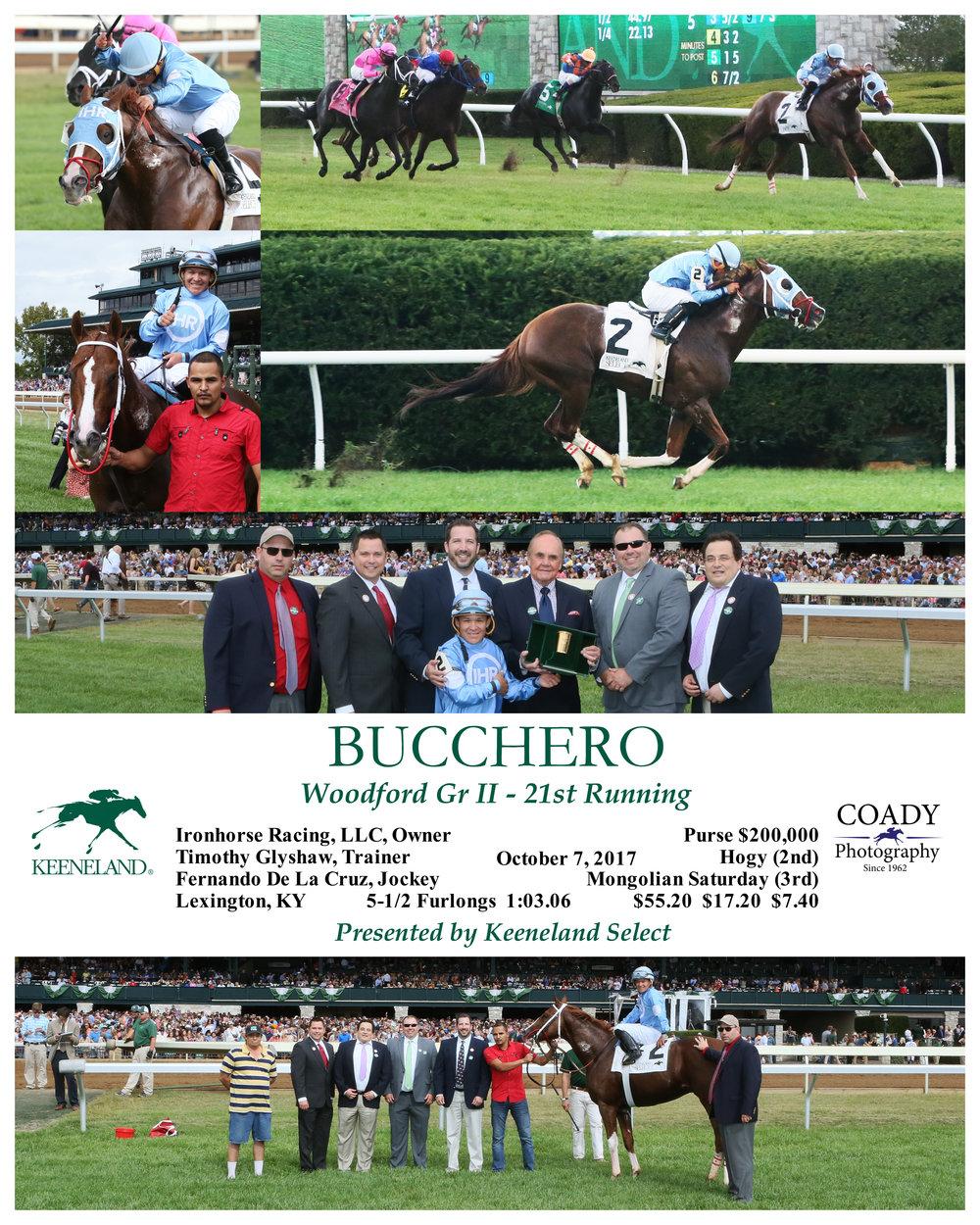Race 05 BUCCHERO 100717.jpg
