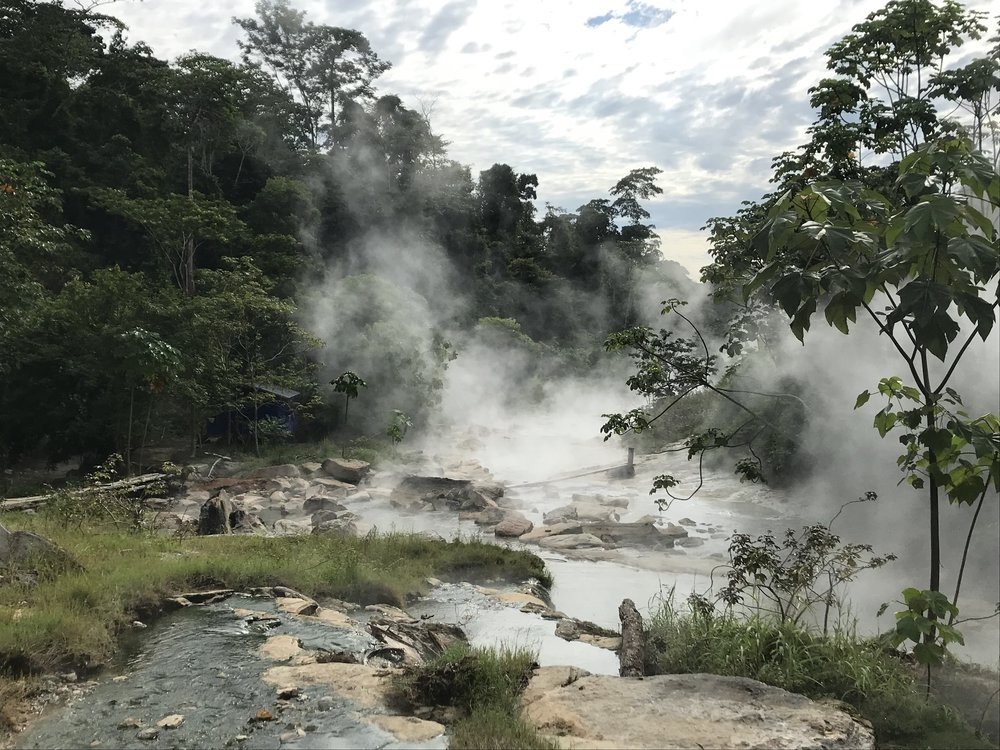 Boiling river at Mayantuyacu. Photo by William Keefer.