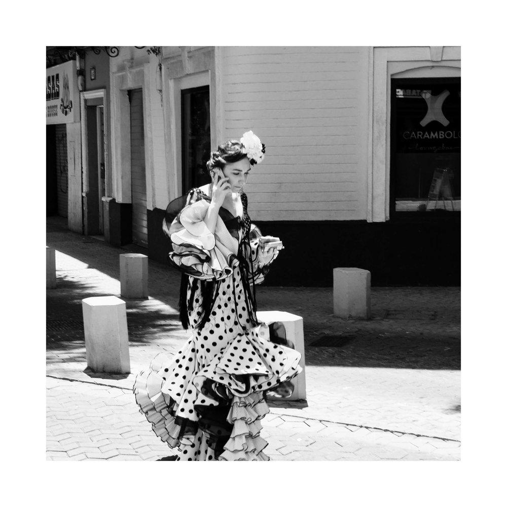 03 Flamenco I