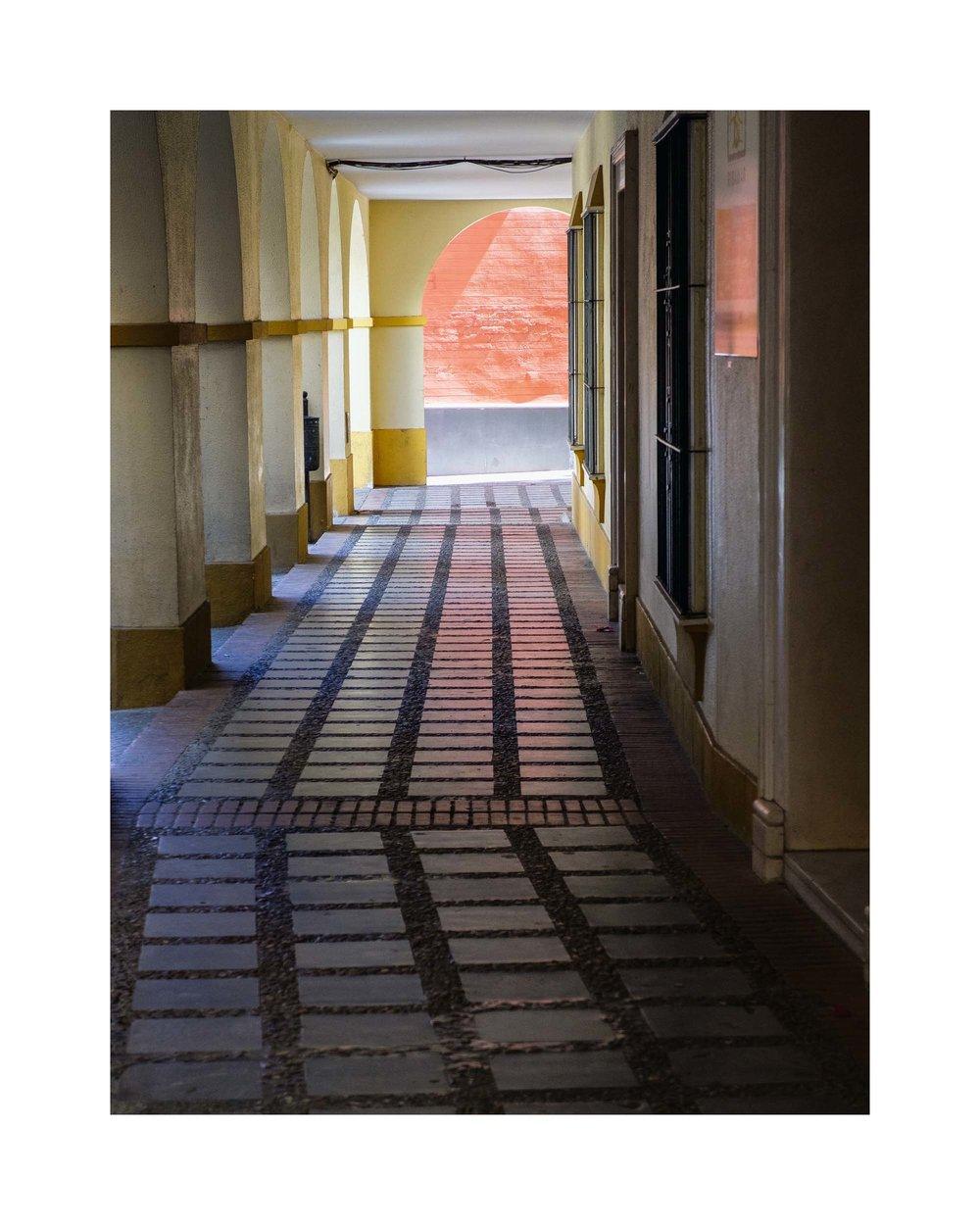 17 Pathway