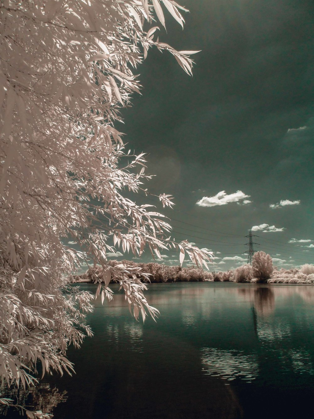 04 Walthamstow Wetlands