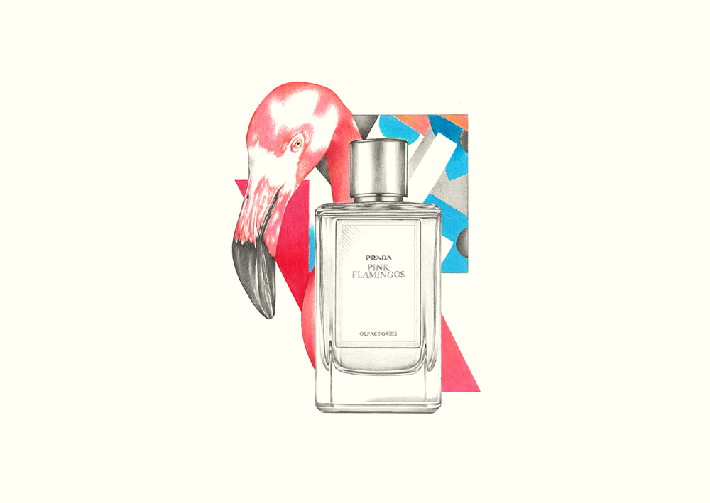 Alessandro-Monaco-PS-Magasin-Illustrated-Editorial-Prada.png
