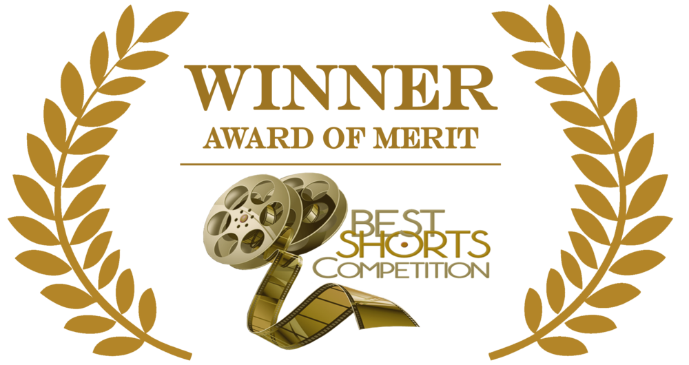 "WINNER AWARD OF MERIT:   ""BEST MUSIC VIDEO"" Best Shorts Competition:"