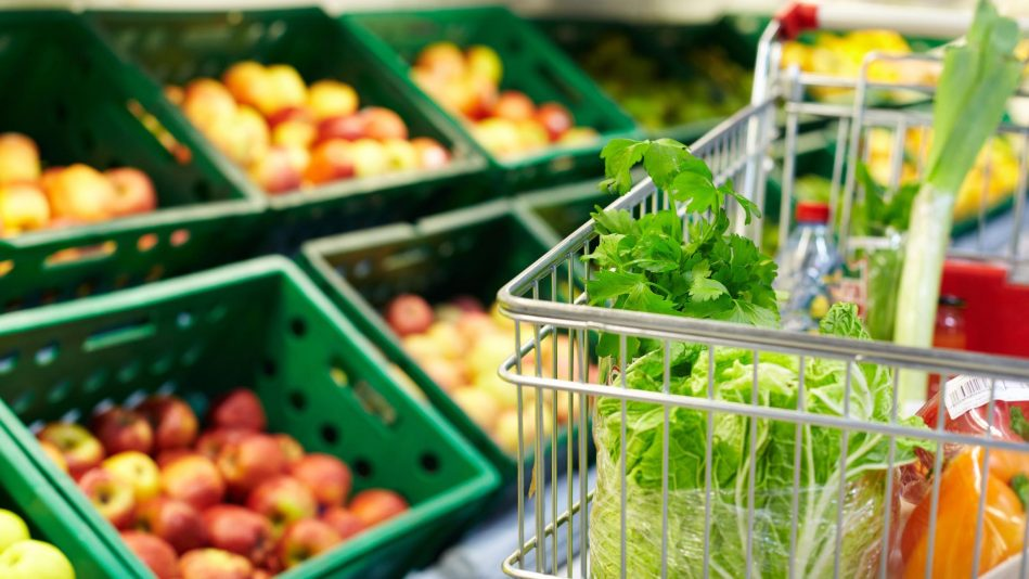 Grocery Shopping - We get it! There isn't enough time in the day to accomplish everything. Let us go to your favorite grocer and get today's catch. Rates starting at $50/hr.