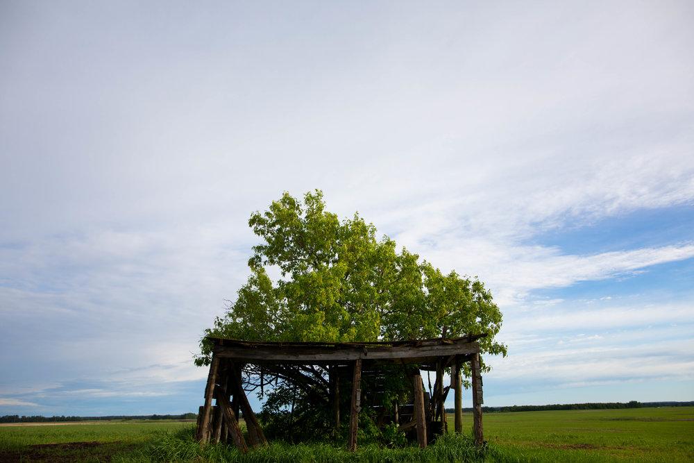 westlock farm