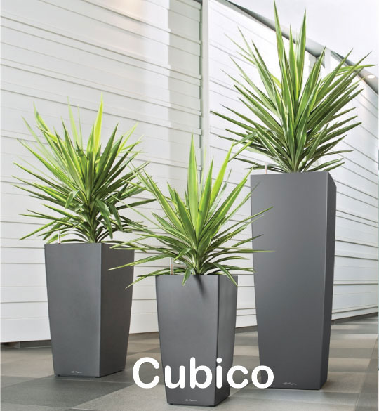 cubico1.jpg